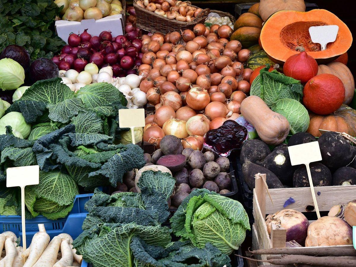 Foto: Variedad de hortalizas invernales.