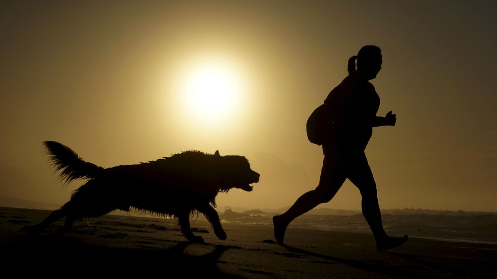 Foto: Salir a correr con tu perro no tiene más que beneficios para ambos (Reuters)