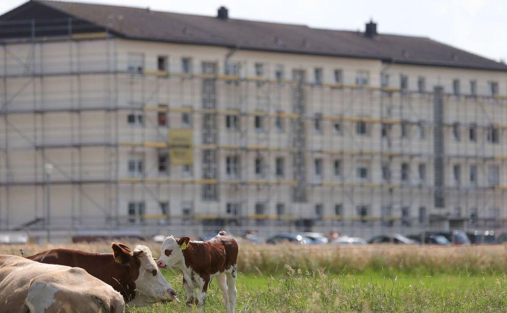 Foto: Una planta cárnica en Alemania. (EFE)