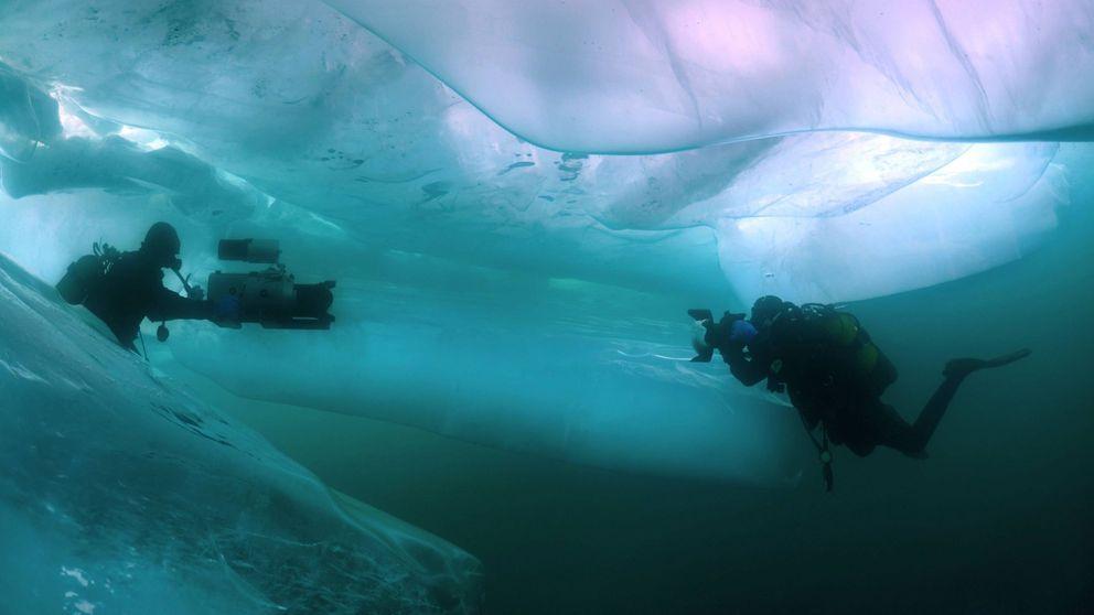 Buceo bajo hielo: cuando aventura y ciencia se unen en territorio hostil