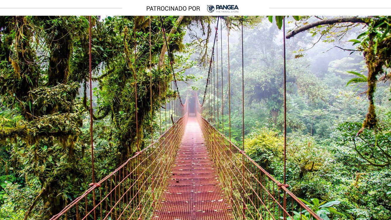Costa Rica: pura vida en Tortuguero, San José, Tamarindo y más