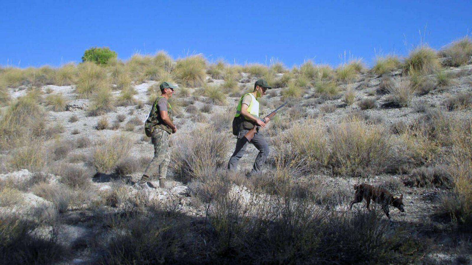 Foto: Competición de caza menor en Madrid. (Federación Madrileña de Caza)