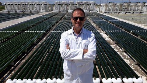 Los Hernández, reyes del arroz, patentan el mejor antioxidante a partir de algas