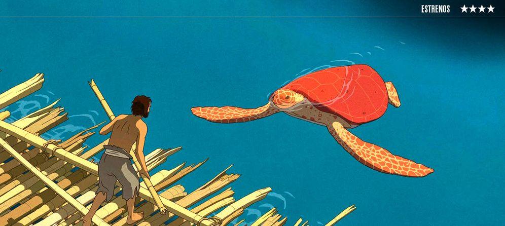 Foto: 'La tortuga roja'.