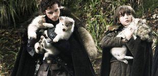 Post de ¿Qué fue de los lobos Stark, los otros protagonistas de 'Juego de tronos'?