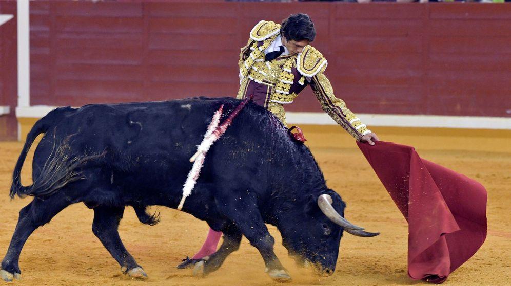 Foto: Corrida de toros celebrada en la plaza de toros de Illescas, en Toledo (Efe)