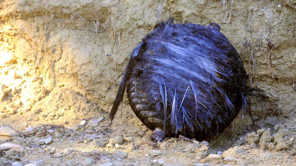 Foto: La segunda esfera espacial encontrada también en Calasparra (Murcia). (Foto: EFE)