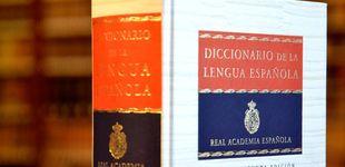 Post de Contra la imbecilidad: la palabra 'portavoza' hace más machista el idioma