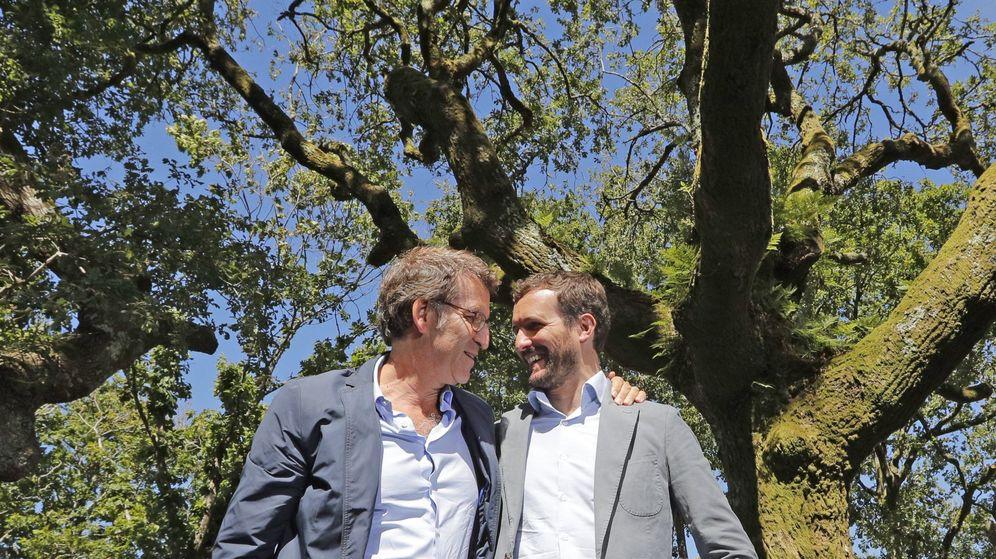 Foto: Alberto Núñez Feijóo y Pablo Casado, en una imagen de archivo. (EFE)