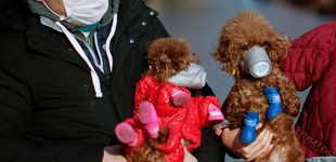 Post de Última hora del coronavirus: aíslan a 14 infectados en plena evacuación a EEUU