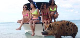 Post de Modelos y musicote en la isla de Escobar: Fyre, la estafa a pijos que acabó en drama