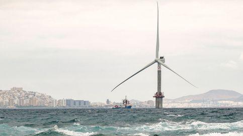 La eólica marina debe atender a los requerimientos ambientales