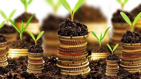 Intermoney y QVAN se unen para impulsar servicios ESG con una nueva plataforma