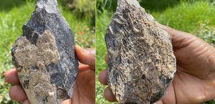 Post de El Homo erectus ya creaba herramientas