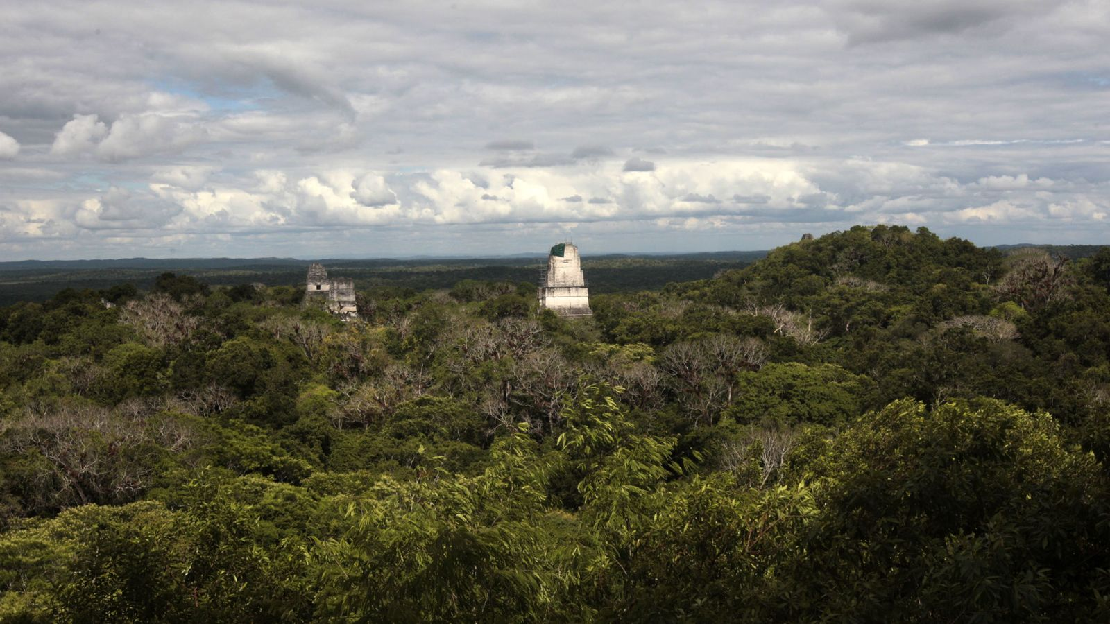 Foto: Vista del parque arqueológico Tikal en mitad de la selva petenera. Petén, Guatemala. (EFE)