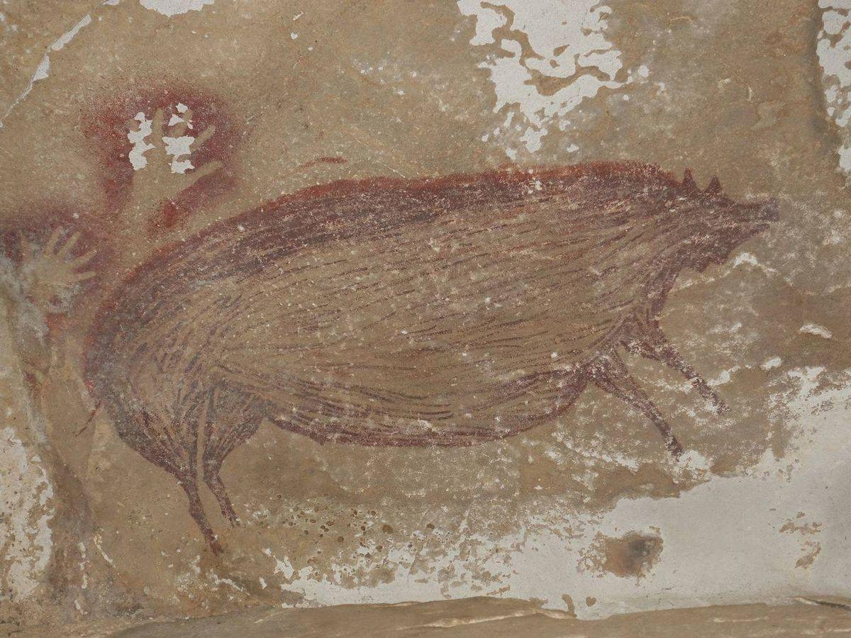 Foto: Pintura rupestre de un cerdo verrugoso. (ARKENAS)