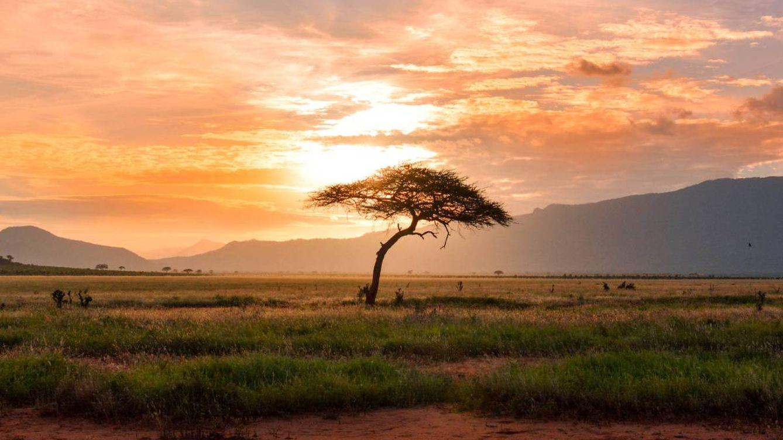 África Oriental: oportunidades de inversión para las empresas españolas