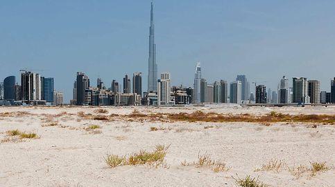 Ciudades oasis: las únicas que sobrevivirán al cambio climático