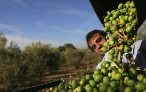 Renzi, contra el amigo Rajoy por su aversión a que Italia entre en el aceite español
