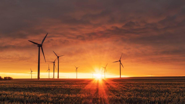 Las oportunidades de inversión sostenible para este 2021