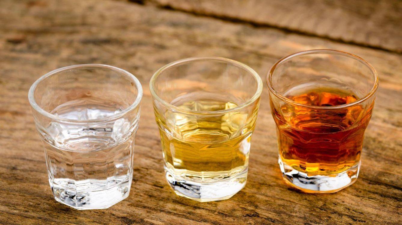 Ni tequila ni mezcal: raicilla, el destilado mexicano más especial
