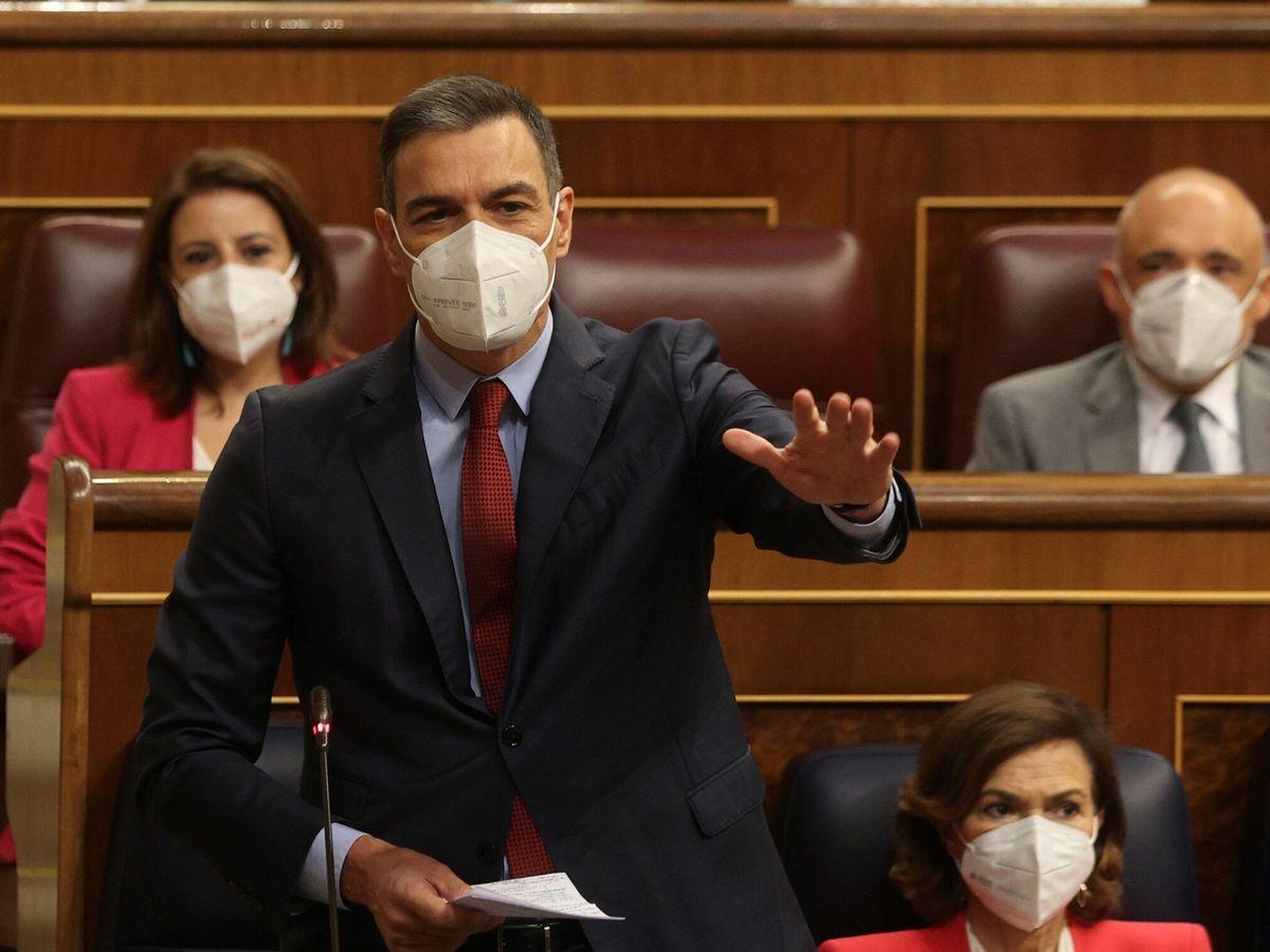 Foto: El presidente del Ejecutivo, Pedro Sánchez. (EFE)