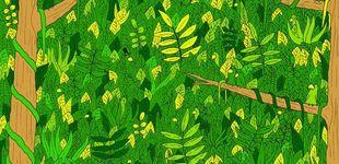 Post de El último acertijo visual: ¿puedes descubrir a la serpiente en la jungla?