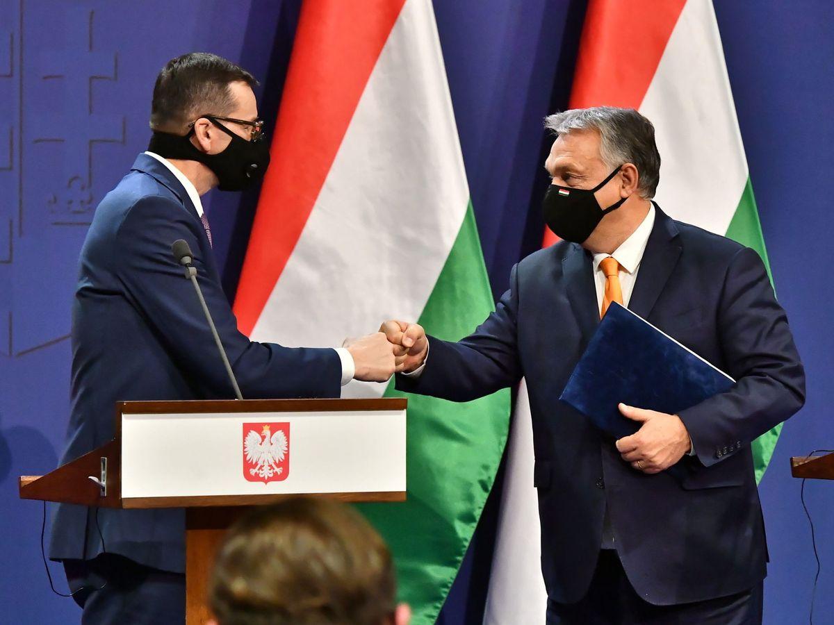 Foto: Los primeros ministros de Hungría, Viktor Orban (d) y de Polonia, Mateusz Morawiecki (i). (EFE)