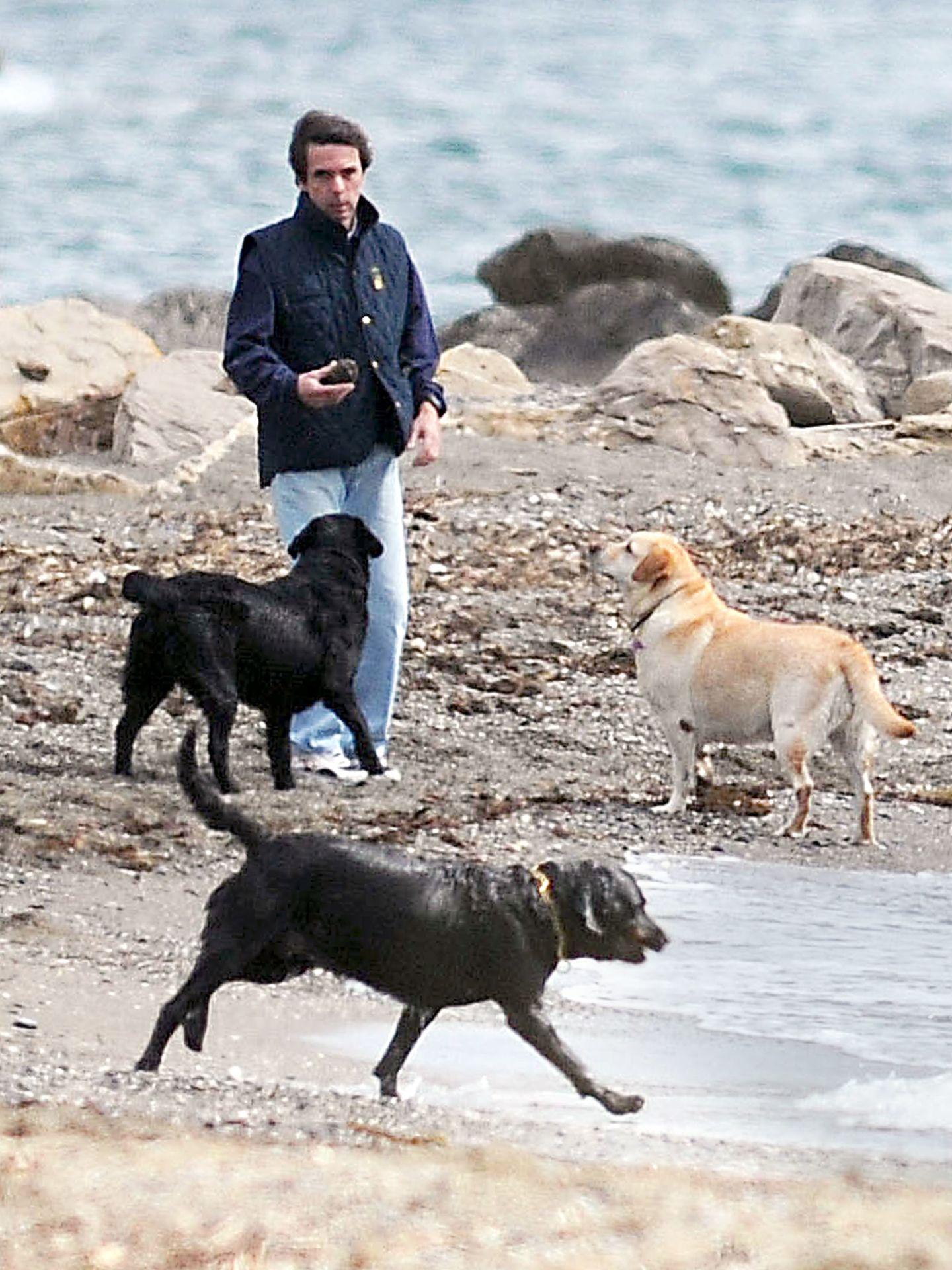José María Aznar, jugando con sus perros por las playas de Guadalmina. (I.C.)