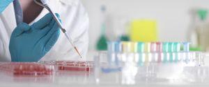 """Las farmacéuticas tendrán que publicar """"sus legítimos secretos comerciales"""""""