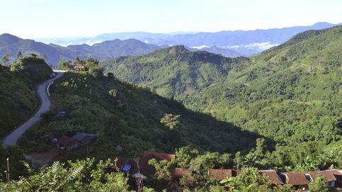 La sorprendente recuperación de los bosques vietnamitas