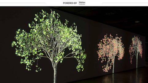 Recrear vida en las paredes: la tecnología se convierte en arte