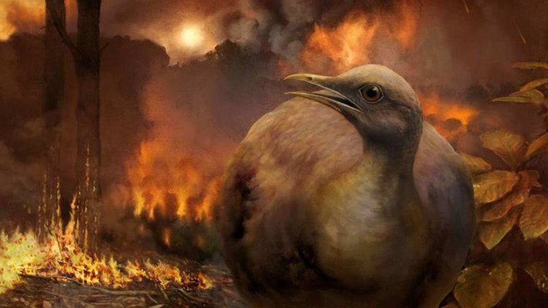 Una española ayuda a zanjar un debate de décadas: ¿de qué murieron los dinosaurios?