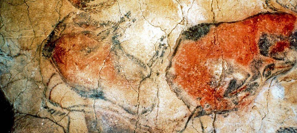 Foto: Interior de las Cuevas de Altamira. (EFE)