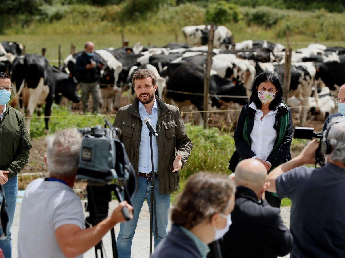 Foto: Pablo Casado, el año pasado en una explotación láctea en Lugo. (EFE)