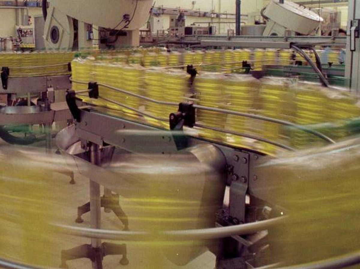 Foto: Rebelión de los aceiteros por el etiquetado que equipara el aceite de oliva y el de colza