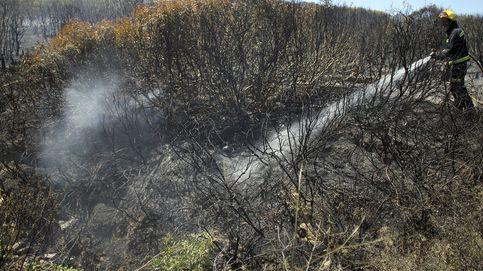 Desalojan preventivamente a 400 personas por un incendio forestal en Málaga