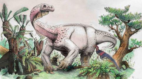 12.000 kilos y pariente del brontosaurio: descubren un nuevo dinosaurio del Jurásico