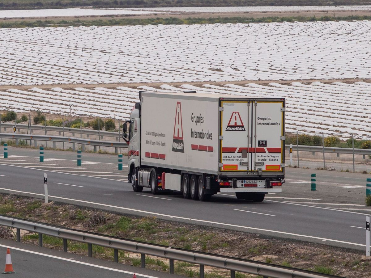Foto: Un camión frigorífico circula por la A-30, que une Cartagena con Albacete. (EFE)