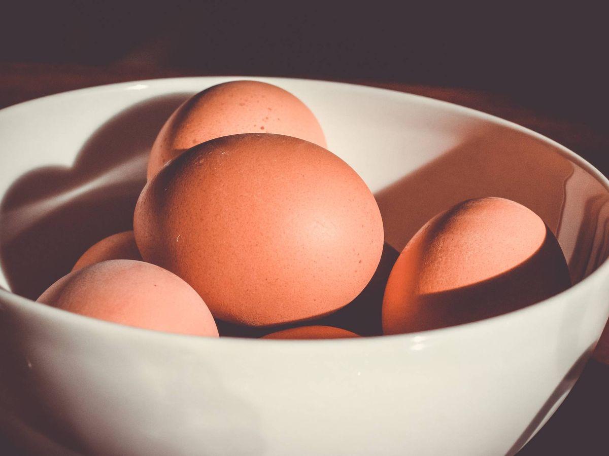 Foto: Alimentos que no necesitas meter en la nevera. (Brina Blum para Unsplash)