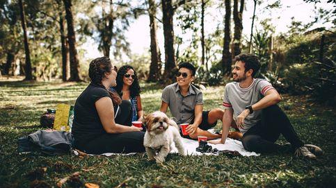 Qué debes tener (muy) en cuenta antes de hacer un picnic