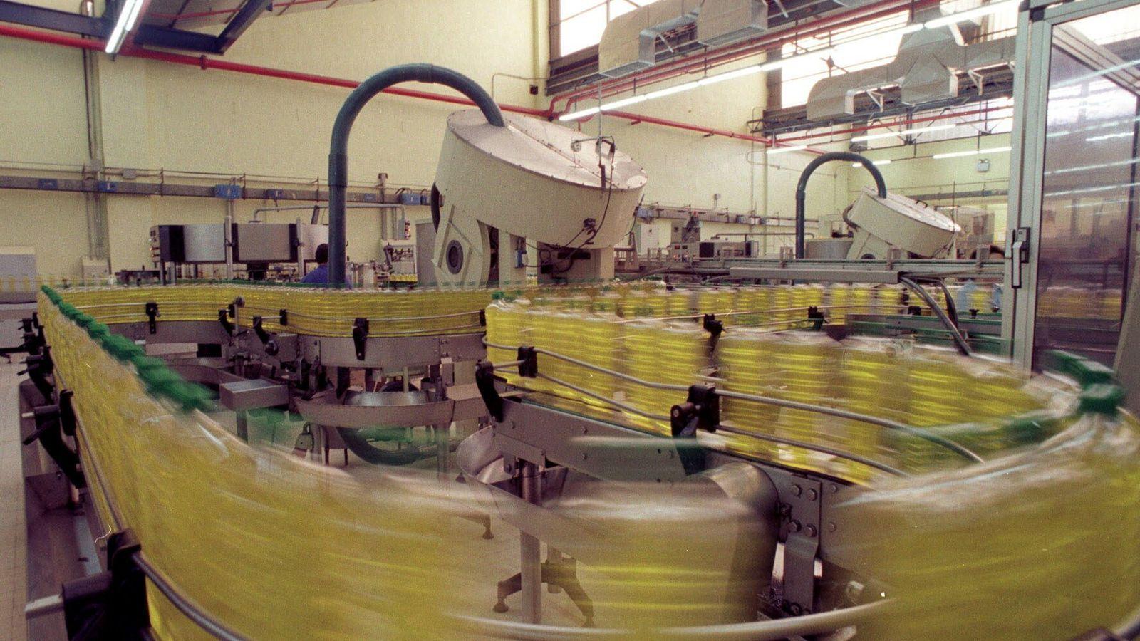 Foto: Embotelladora de aceite de oliva. (EFE)