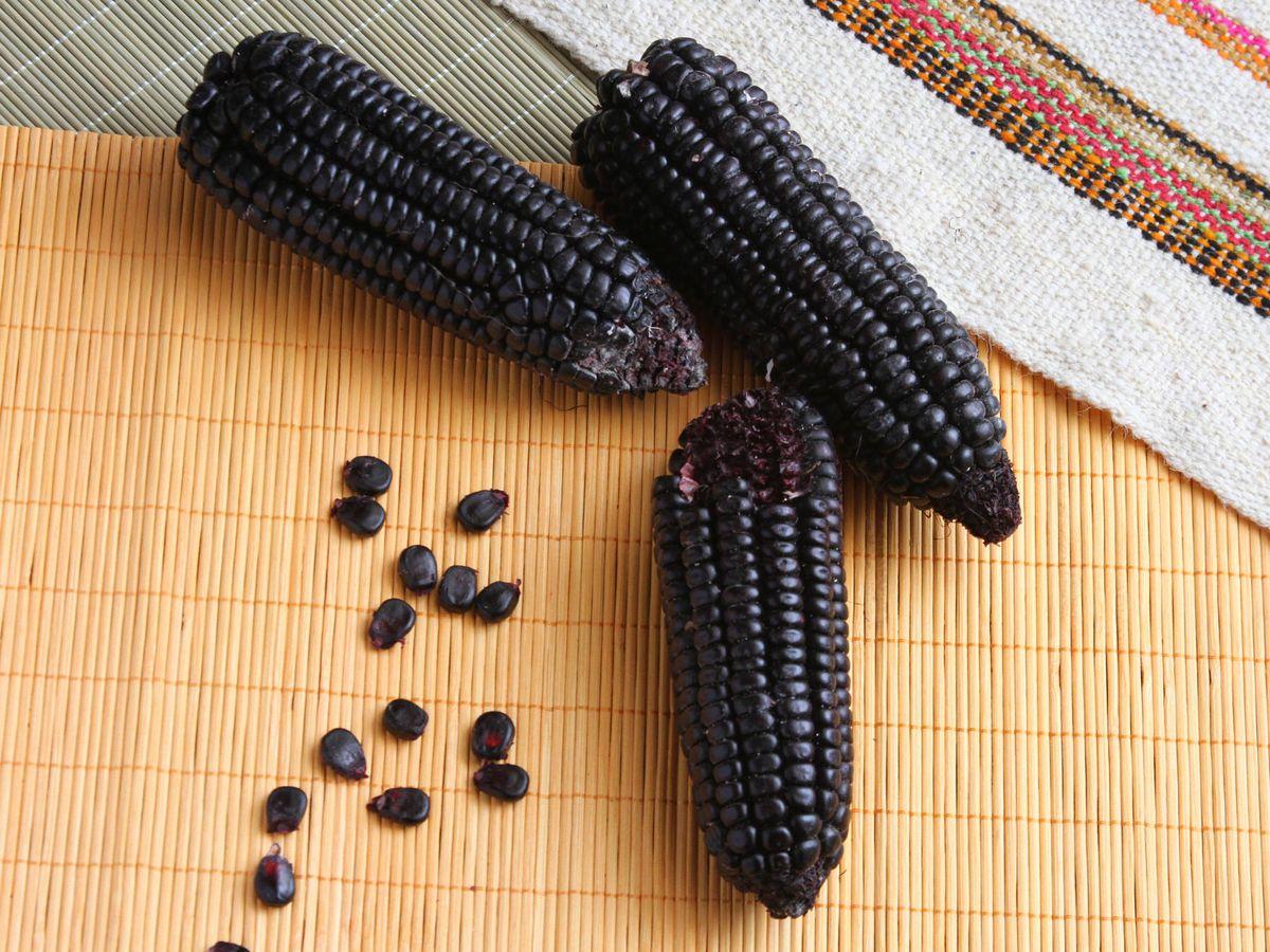 Foto: Este tipo de maiz es muy típico en Perú. (iStock)