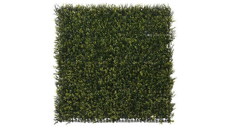 Jardín vertical tropical verde Tenax