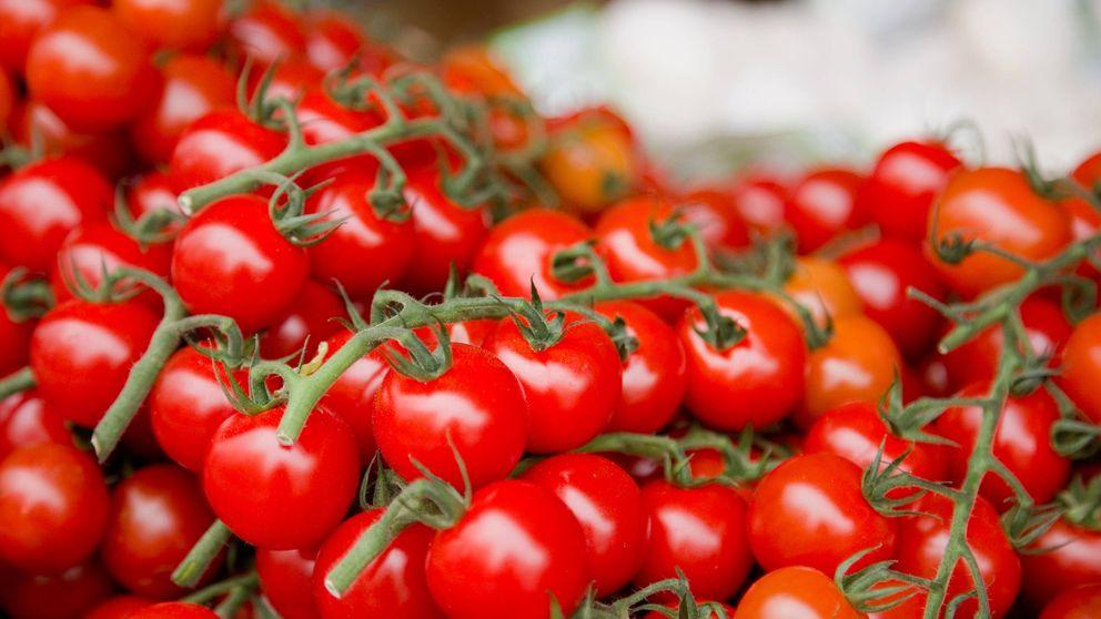 Tomates cherry: la versión más dulce del protagonista del gazpacho