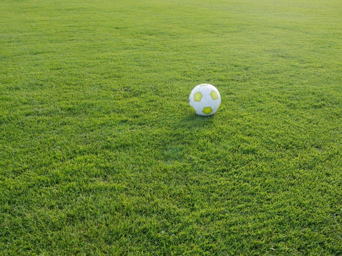 Foto: Otros tres jugadores han resultado levemente heridos por el rayo. (Pixabay)