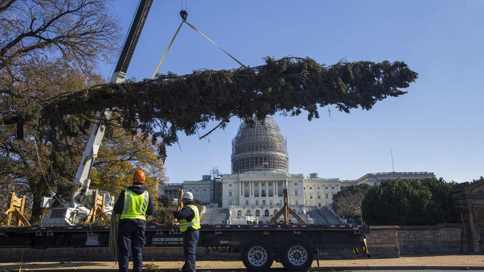Foto: Capitolio de Estados Unidos. (EFE)