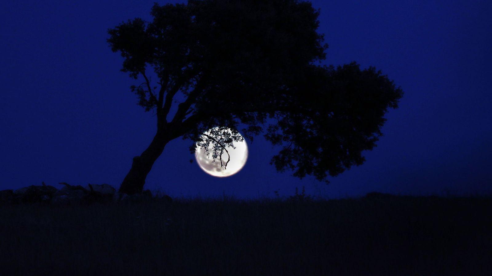 Así será el eclipse penumbral de Luna que el domingo podrá verse desde  España