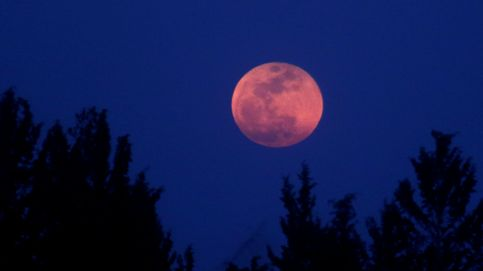 Dónde ver 'luna de sangre' o 'luna roja', el eclipse lunar que podrás ver hoy mismo
