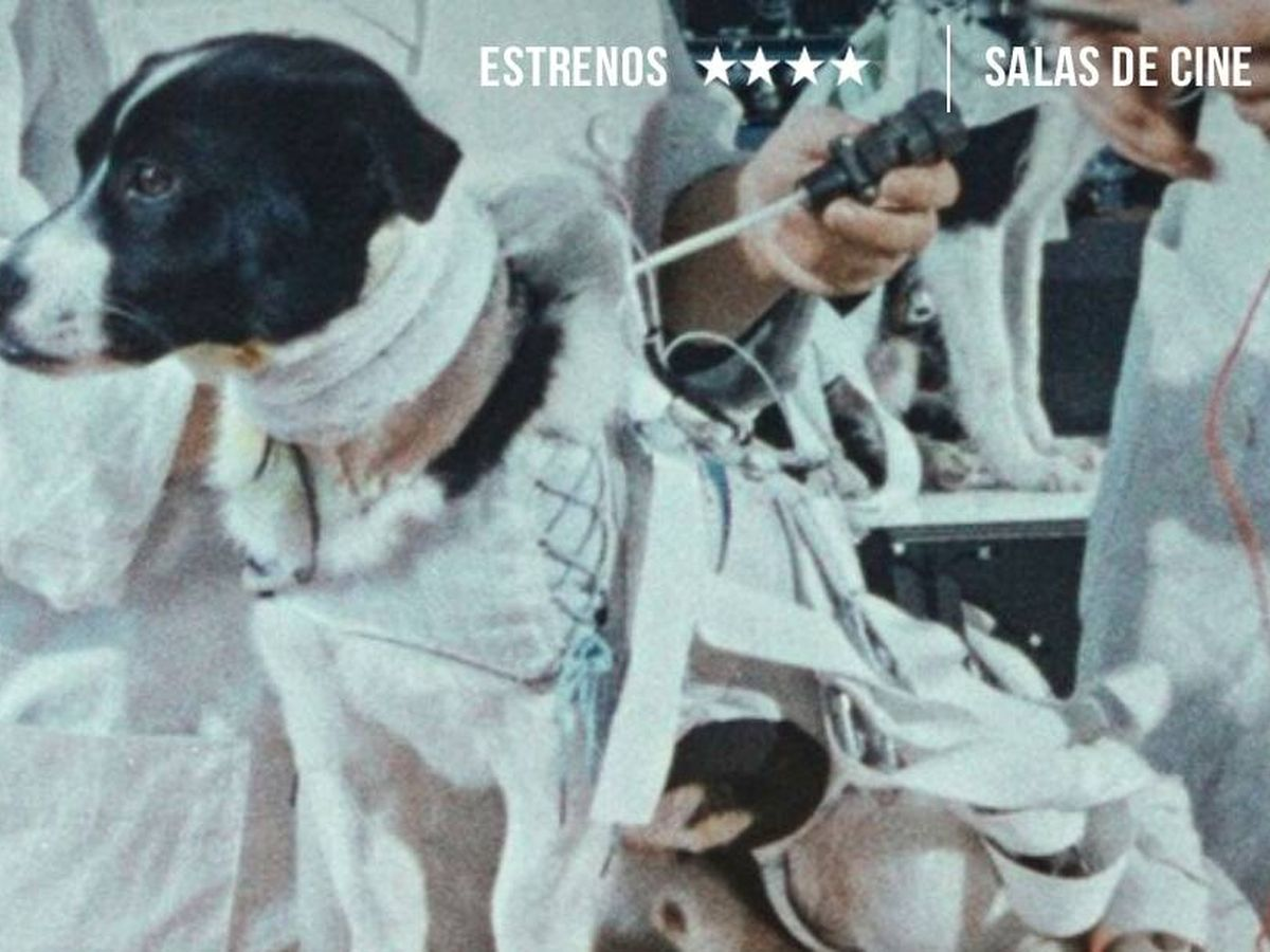 Foto: La perra Laika, en una imagen de 'Space Dogs'. (Filmin)